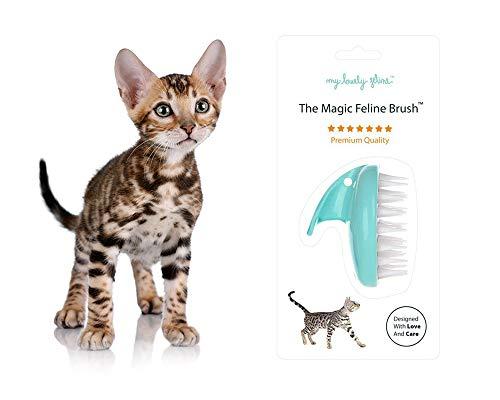 My Lovely Feline: The Original Magic Feline Brush [Premium Silicone Brush for Long Haired & Short Haired Cats] Seafoam Blue