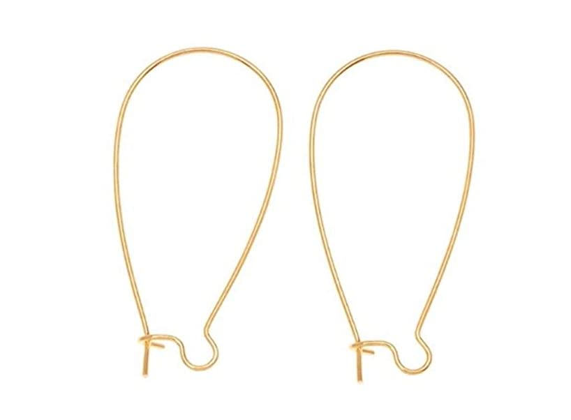 200pcs Top Quality Hypoallergenic Earring Hooks Kidney Ear Wires Earwire 25mm Long Gold Plated Brass Earrings Making Findings CF186