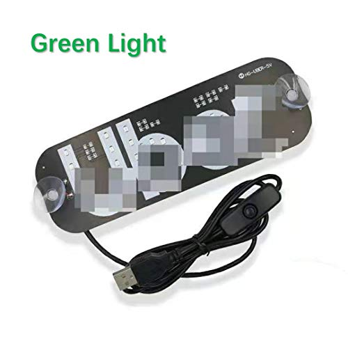 LED Sign for Car, Green Glowing Light Sign Decal with Suction Cups, Glow Sign Light on Car Window with DC12V USB Car Charger