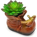 Ceramic Shoe Shaped Plant Pot/Bonsai Pot/Flower Pot/Succulent Planter Multipurpose Pot(red)