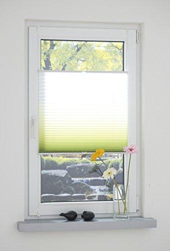 Liedeco® Klemmfix Plissee Farbverlauf verspannt mit Klemmträger/Breite x Höhe: 100x130 cm/Farbe: Grün/Plissee farbig/lichtdurchlässig verstellbar/Innen-Montage ohne Bohren / 123 montiert