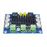 Fivesix Junta TPA3116D2 DC 12-26V 100W TPA3116DA Mono Canal de alimentación Amplificador de Audio Digital XH-M542, Productos de jardinería