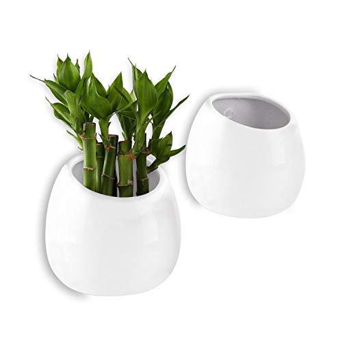 T4U 10cm Keramik Wandvase Weiß 2er-Set, Klein Wandmotage Pflanzgefäß Hängende Blumenvase für Zimmerpflanzen