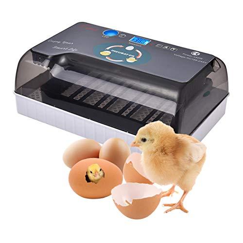 Cheerfulus Eier Inkubator Automatisch mit Effizienter LED Beleuchtung,Inkubator Brutkasten Motorbrüter Brutmaschine Hühner,35 Hühnerei