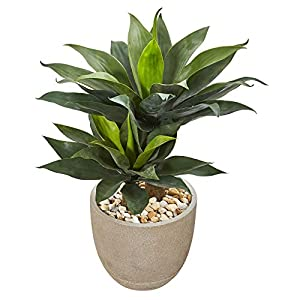 "Silk Flower Arrangements Unknown1 34"" Double Agave Succulent Artificial Plant in Sand Stone Planter"