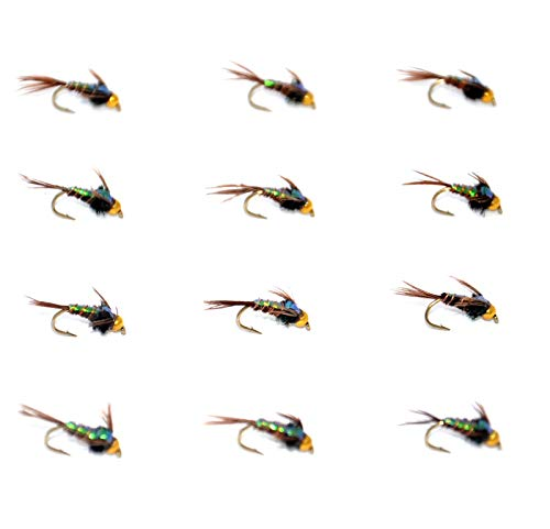 Outdoor Planet 12 Flashback Bead Head Pheasant Tail Mayflies Nymph Flies Lure Assotment for Trout Fly Fishing Wet Flies