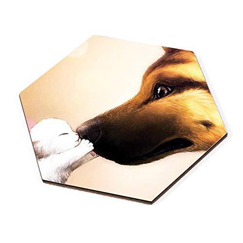Sataanreaper Presents Conjunto De 2 Impreso De Diseño del Hexágono Posavasos   Cat Dog N Pintura   Montañas Rusas De Madera Conjunto De 2   Montañas Rusas De Madera #Sr-696