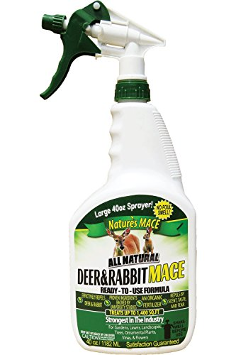 Nature's Mace Deer & Rabbit 40oz Spray/Covers 1,400 Sq. Ft. / Repel Deer from Your Home & Garden. Safe to use Around Children, Plants & Produce. Protect Your Garden Instantly