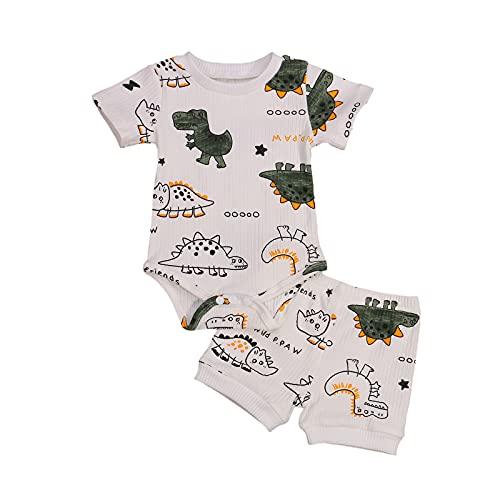Conjunto de 2 piezas de ropa de dinosaurio para recién nacido, de punto acanalado, de manga corta, camiseta y pantalones cortos
