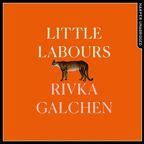 Little Labours audiobook cover art