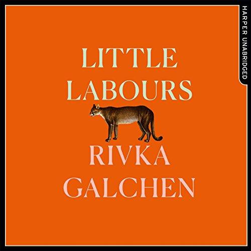 Little Labours cover art