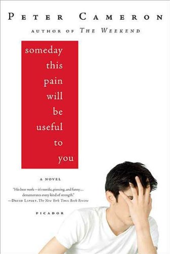 Someday This Pain Will Be Useful to You: A Novel (English Edition)