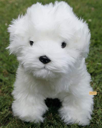 Zaloop Hund Pudel Malteser Plüschtier Kuscheltier Stofftier Plüschhund 190