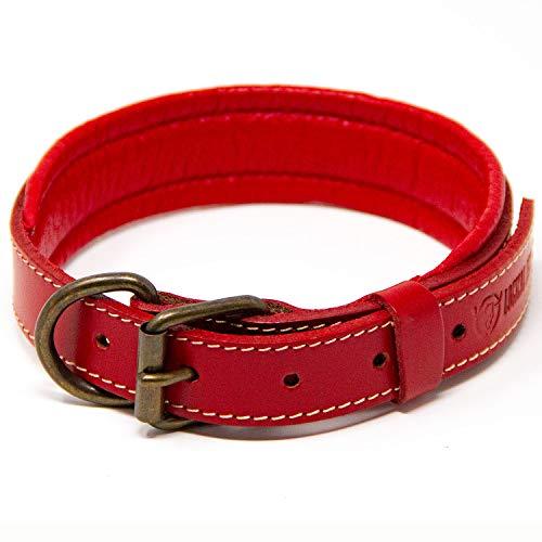 Logical Leather Padded Dog Collar - Best Full Grain Heavy Duty Genuine Leather Collar - Red - Medium