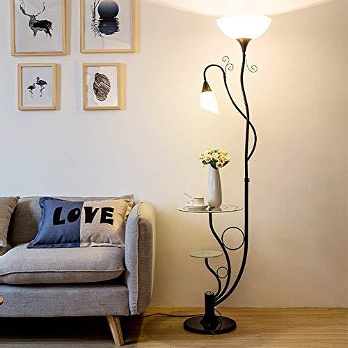 YJTldd Moderner moderner Stahllampenkörper mit Acryllampenschirm E27 * 2 Klassische Stehlampe mit Zwei schwarzen Lampen für Kaffeetisch (29 * 164 cm)