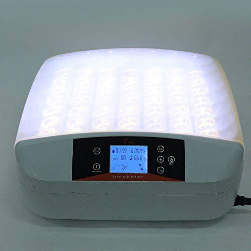Inkubator Große Brutmaschine Vollautomatisch 56 Eier Intelligentes digitales Brutmaschine Brutkasten mit LED Temperaturanzeige und Feuchtigkeitsregulierung (LED)