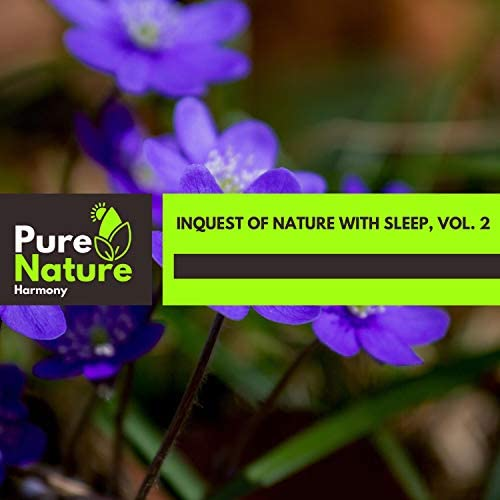 Nature Field Recordings & Nature Radiance