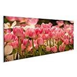 islandburner Bild auf Leinwand Schöne rosa Tulpen Blume im