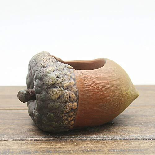 YTGUEVKDH Creativo Cubierta en Forma de Maceta del Cono del Pino de Avellana suculento de los plantadores de múltiples Funciones de Escritorio Resina Adornos (Color : C)