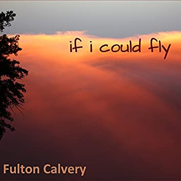 If I Could Fly (feat. Terry Wright)