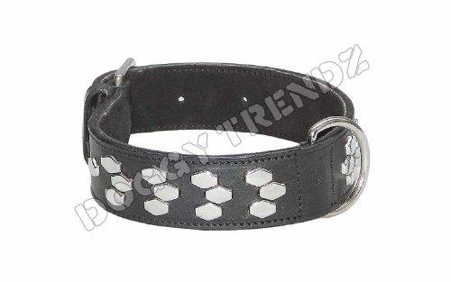 Avon Pet prodotti esagonale cromato borchie in pelle collare