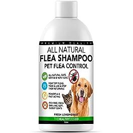All Natural Flea Shampoo for Dogs & Cats   Lemongrass   500ml   Powerful & Safe Formula   The Best Wash Treatment to Kill & Control Fleas Ticks & Lice