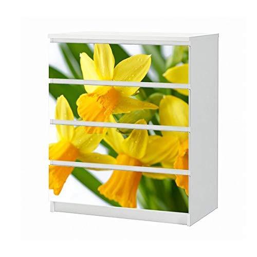 Set Möbelaufkleber für Ikea Kommode MALM 4 Fächer/Schubladen Blume Narzisse gelb Blumen Garten grün Aufkleber Möbelfolie sticker (Ohne Möbel) Folie 25B546