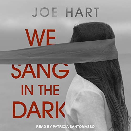 We Sang in the Dark cover art