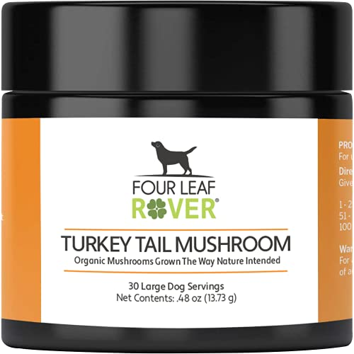 Top 10 best selling list for best supplements for lymphoma in dogs