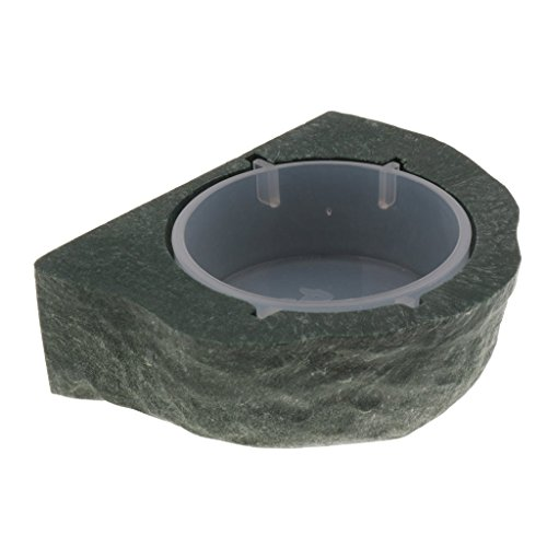 Backbayia Magnetic Reptile Food Water Bowl Terrarium Reptile Feeder Feeding Dish for Gecko, Lizard, Turtle (Green)