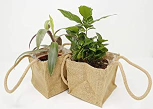 Lion Ribbon Jute Burlap Potted Plant Saucer - 4 1/2 Inch - Waterproof Lined Cover for Potted Indoor Plants for Small Pots - Set of 2