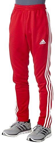adidas Herren T16 Team Hose, Rot/Weiß, L