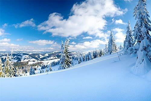Diy Pintura Al Óleo Pintura Por Número Kit Pendientes Nubes Nieve Invierno Árbol Moderno Arte De Pared Lienzo Pintura Regalo Para Niños Decoración Del Hogar 30 * 40cm