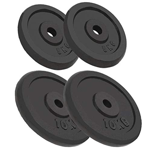 vidaXL 4x Dischi per Pesi 20 kg Disco Bilanciere in Ghisa Pesi Massa Muscolare