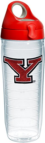 Tervis YSU Penguins Logo Insulated Tumbler with Emblem and Red with Gray Lid, 24oz Water Bottle, Clear