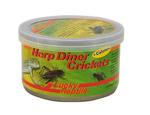 Herp Diner - Crickets groß 35 g, ca. 60 große gekochte Grillen