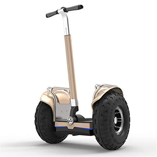 DingD Elektro-Scooter Auto-Gleichgewicht Hoverboard Elektro-Scooter Smart-Skateboard Selbst Gleichgewicht Scooter LED Hoverboard 19 Zoll,Gold