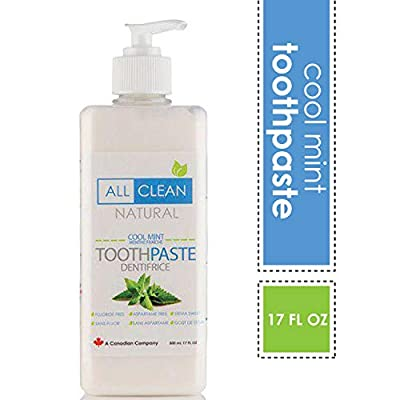 Naturally Clean Cool Mint Toothpaste, 17 oz, Fluoride-Free, Antiplaque, Cavity Protection & Whitening Toothpaste (Pump Action)