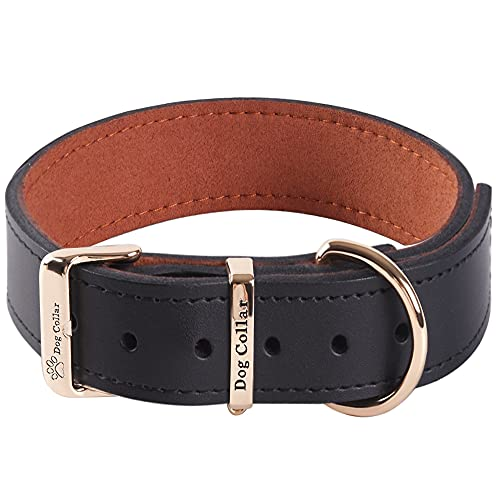 Extra Breites, Dickes, Weiches Hundehalsband aus Echtem Leder zum Gehen und Trainieren Hochleistungs-Hundehalsband für Kleine, Mittel Grosse und Große Rassehunde (Schwarz, L)