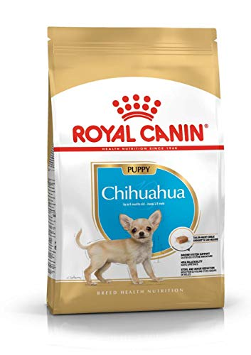 ROYAL CANIN Chihuahua Junior 1,5 kg, 1er Pack (1 x 1.5 kg)