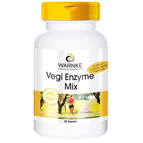 Enzym-Komplex Kapseln - vegan - Verdauungsenzyme Mix - Bromelain, Papain, Amylase, Lipase, Protease und Rutin - 90 Kapseln