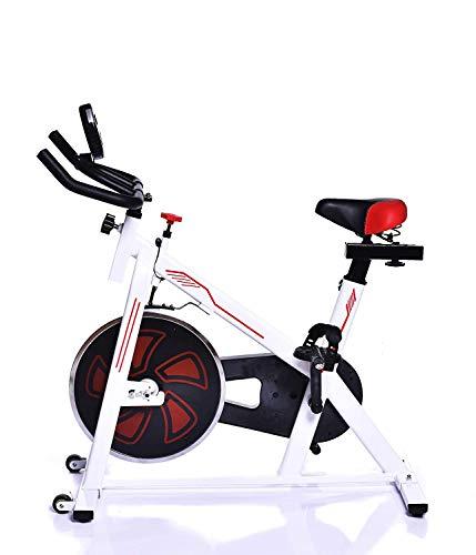 IRIS Indoor Cycle Trainer Fitness Spin Bike-12 kgs Flywheel