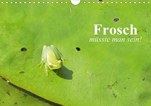Frosch müsste man sein! (Wandkalender 2020 DIN A4 quer)