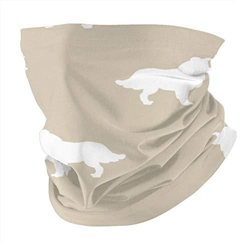 Xinflag@10 Border Collie Silhouette - Máscara de arena y protector facial para hombres y mujeres, variedad de moda, pasamontañas para polvo, al aire libre, deportes