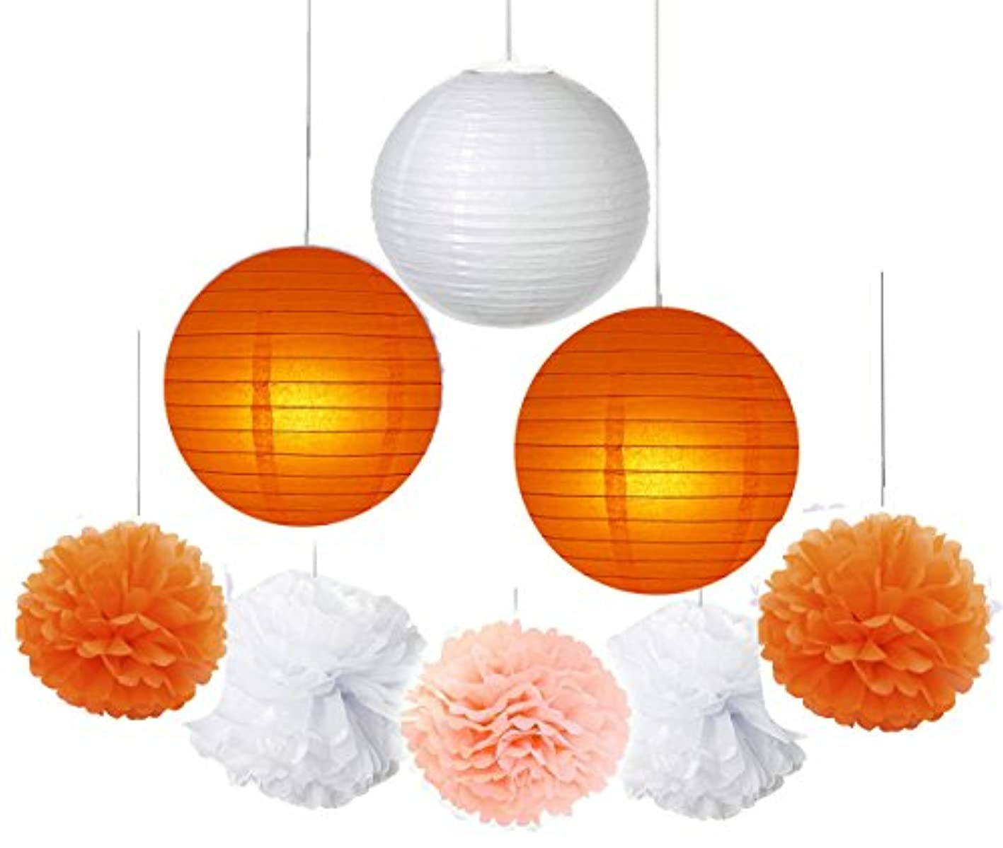 Fascola 16 pcs White Peach Orange 10inch 8inch Tissue Paper Pom Pom Paper Lanterns Mixed Package for Lavender Themed Party Bridal Shower Decor Baby Shower Decoration fbpjuubyide404