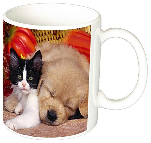 MasTazas Golden Retriever Puppies Kitten Tasse Mug