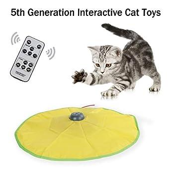 Jouet interactif 5ème génération pour Chat avec télécommande sans Fil et Batterie au Lithium 2600 mAh - Jouet motorisé en Queue de Souris pour intérieur et Chats de Tous âges