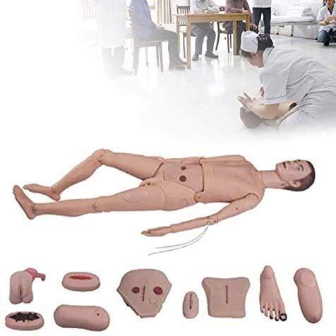 QIANSHI Menschliches Skelett-Modell Männlich, Multifunktions Manikin Anatomische menschliche, natürliche Größe Anatomie-Wissenschafts-Modell