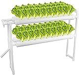 Kit De Cultivo Hidropónico, Tubos De PVC Sistema De Cultivo Hidropónico con Bomba De Agua, Temporizador De Bomba, Experimento Hidropónico De 36 Plantas Y Cultivo De Agua para Verduras