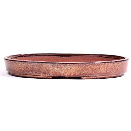 Bonsai 51108 Bol ovale en cuivre 35,5 x 25,5 x 5 cm